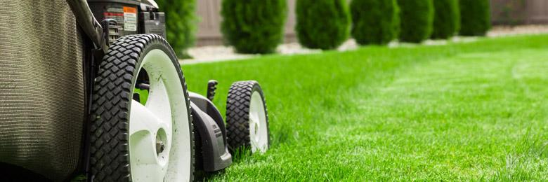 Fort Collins Mowing Company