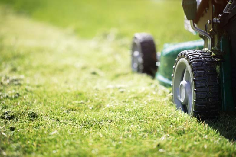 Fort Collins Lawn Mowing Company